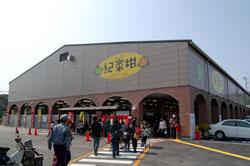 紀菜柑(きさいかん)